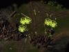 baldurs_gate_enhanced_edition_screenshot_02