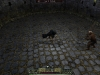dungeon_empire_screenshot_019