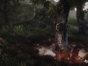 00_the_vanishing_of_ethan_carter_debut_screenshot_04