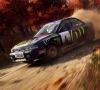 02_DiRT_Rally_2_0_Launch_Screenshot_08