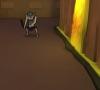 Dungeon _Crawl_Android_TV_Screenshot_01