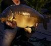 Euro_Fishing_Waldsee_DLC_Screenshot_04