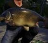 Euro_Fishing_Waldsee_DLC_Screenshot_07