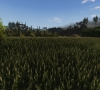 Life_is_Feudal_Your_Own_MMO_New_Screenshot_012