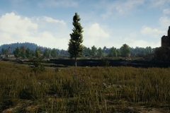 PlayerUnknowns_Battlegrounds_Early_Access_Screenshot_02