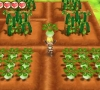 STORY OF SEASONS_ Trio of Towns - Rune_Factory