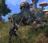 The_Elder_Scrolls_Online_Morrowind_New_Screenshot_07