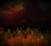 Yomawari_The_Long_Night_Collection_Launch_Screenshot_08
